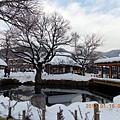山梨-河口湖忍野八海 03.JPG