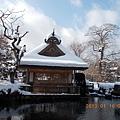山梨-河口湖忍野八海 11.JPG