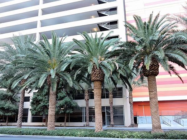 拉斯維加斯-MONTE CARLO RESORT 蒙地卡羅飯店 18.JPG