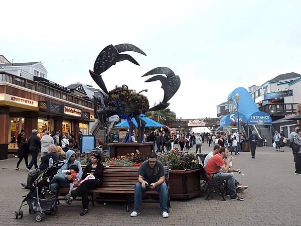 舊金山-漁人碼頭39號碼頭 15.JPG