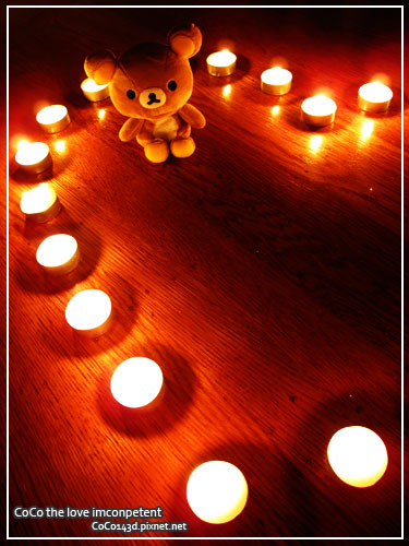Bear in Candle Light