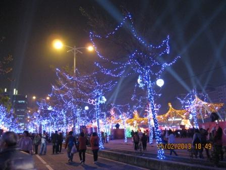 2013台灣燈會在新竹 (10).JPG