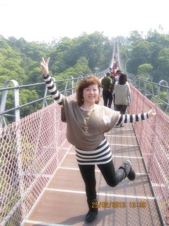 南投天空之橋 (7).JPG