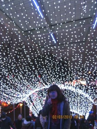 2013台北燈節 (60).JPG