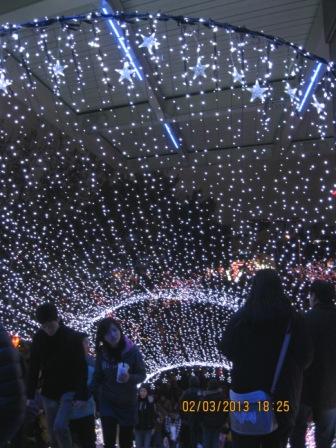2013台北燈節 (61).JPG