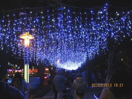 2013台北燈節 (66).JPG