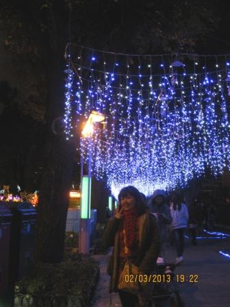 2013台北燈節 (67).JPG