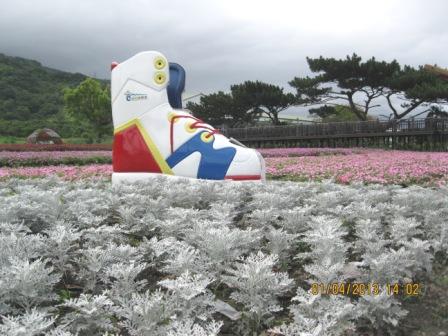 2013台東成功花海 (3).JPG