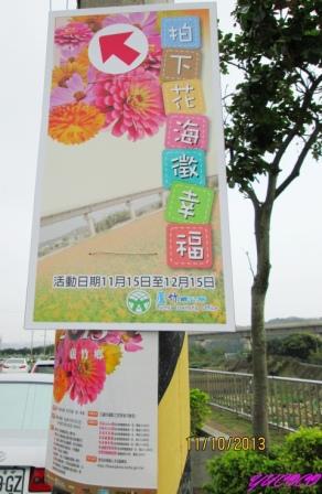蘆竹花海.jpg