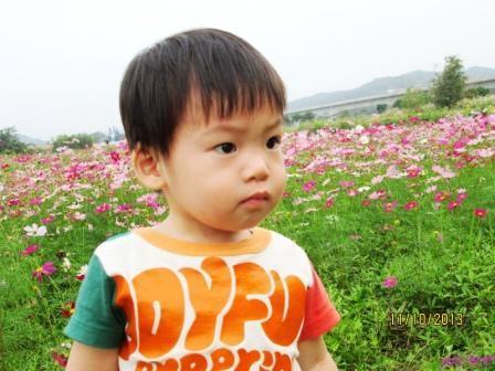蘆竹花海 (34).jpg