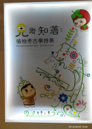 十三行博物館 (16).jpg