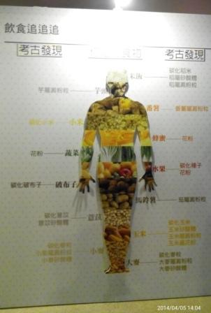 十三行博物館 (17).jpg