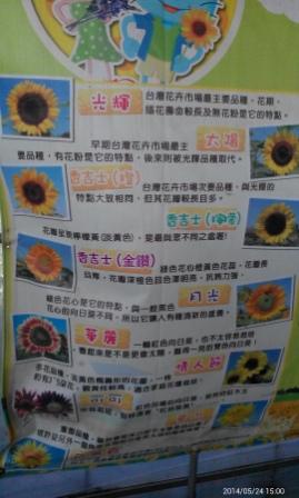 向陽農陽 (35).jpg