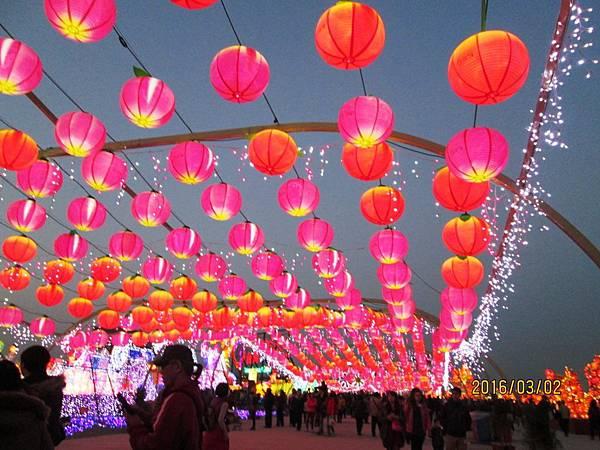 2016台灣燈會-晚上 (6).JPG