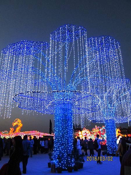 2016台灣燈會-晚上 (10).JPG