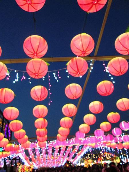 2016台灣燈會-晚上 (15).JPG
