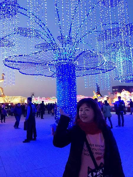 2016台灣燈會-晚上 (43).jpg