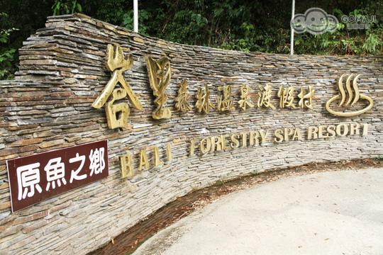 新竹峇里森林溫泉渡假村55.jpg