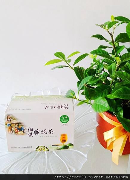虎克 翔琪檸檬茶 (1)