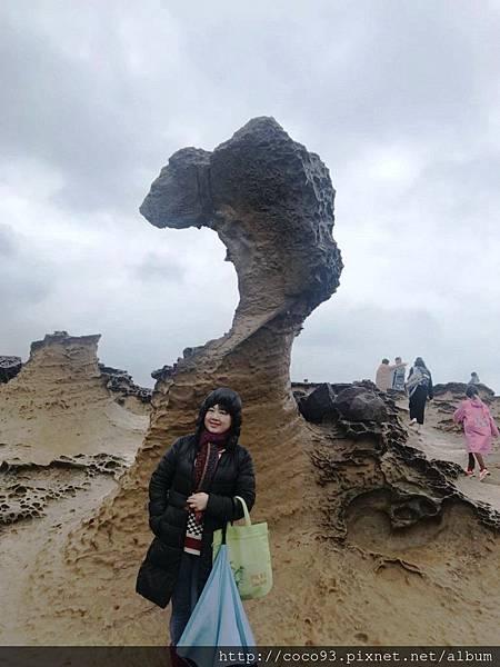野柳地質公園 (8).jpg