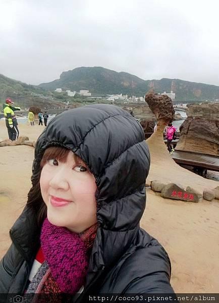 野柳地質公園 (9).jpg