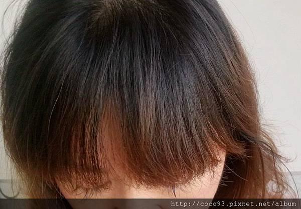 髮基因 (9).jpg