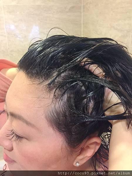 髮基因 (13).jpg