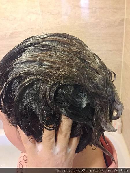 髮基因 (17).jpg