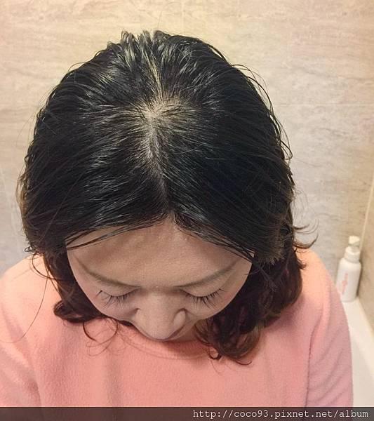 髮基因 (19).jpg