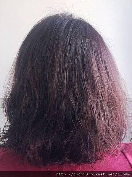 Mix Hair Salon千色髮藝 (32).jpg