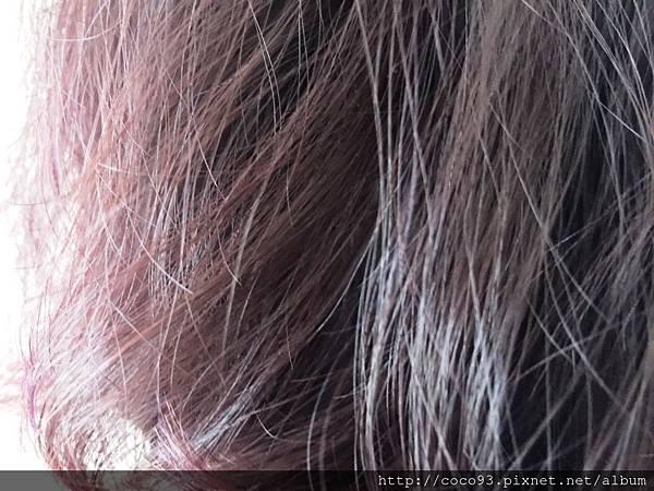 魔娜歌摩洛哥堅果油護髮油 (15).jpg