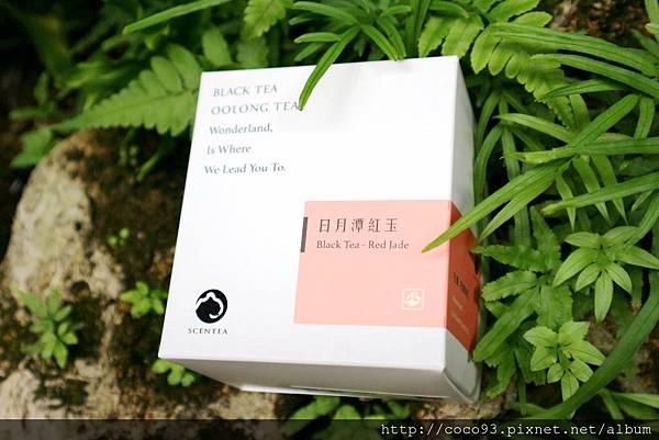 軒汀SCENTEA 高山烏龍紅茶袋茶 (3).jpg