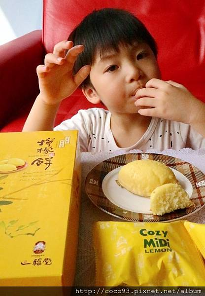 一福堂檸檬餅 (5).jpg