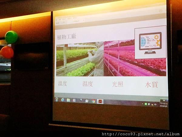 美蔬菜小小科技農夫親子體驗營  (2).jpg