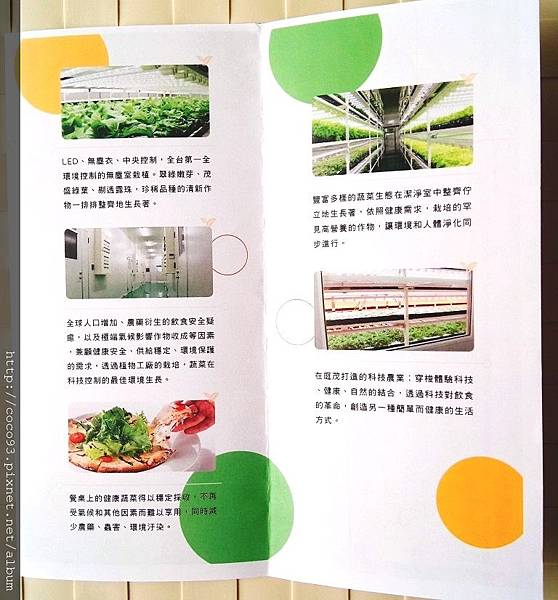 美蔬菜小小科技農夫親子體驗營  (40).jpg