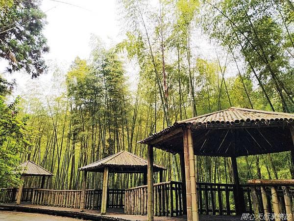 雲林古坑草嶺石壁森林療癒小旅行 (10).jpg