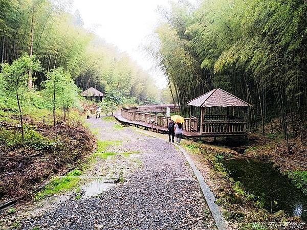 雲林古坑草嶺石壁森林療癒小旅行 (13).jpg