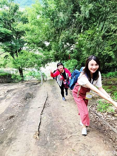 雲林古坑草嶺石壁森林療癒小旅行 (50).jpg