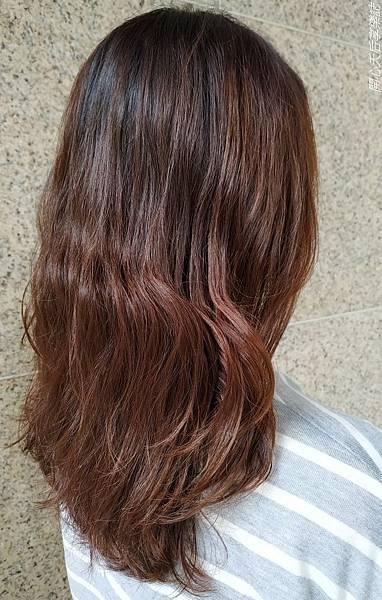 Bravo Hair salon kt角蛋白微整護 (61).jpg