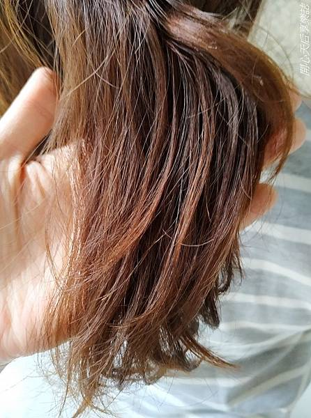 Bravo Hair salon kt角蛋白微整護 (63).jpg