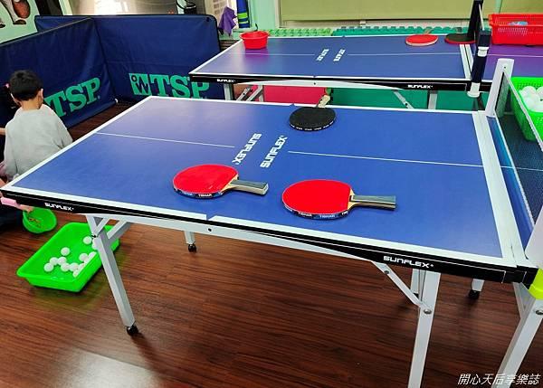 乒乓島兒童桌球 (6)