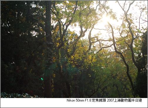 DSC_0056.jpg