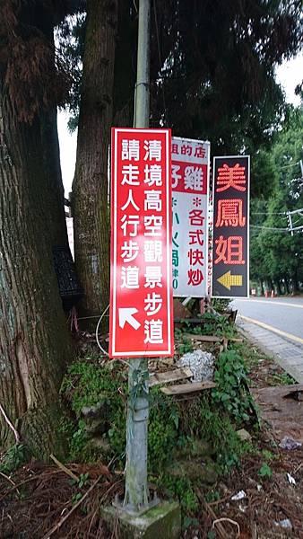 高空步道DSC_2889.jpg