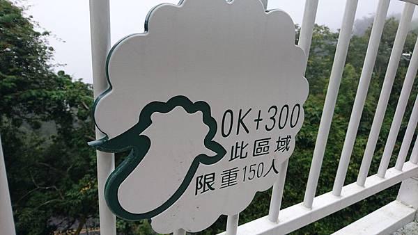 高空步道DSC_2915.jpg