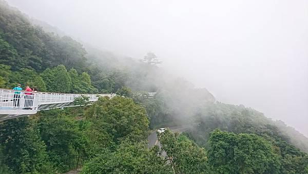 高空步道DSC_2911.jpg