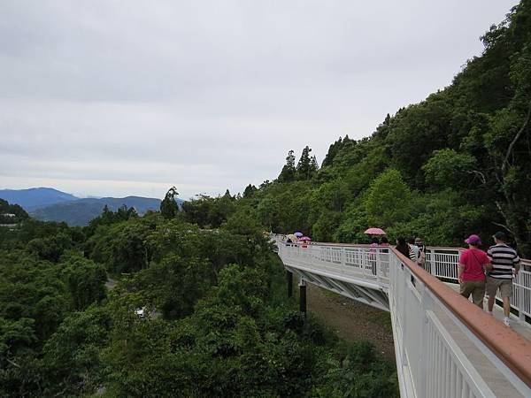 高空步道IMG_0106.jpg