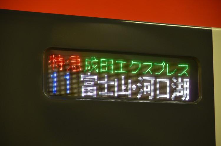 DSC_2655-s.jpg