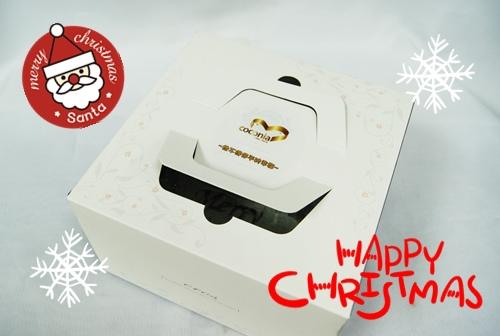 聖誕巧克力蛋糕