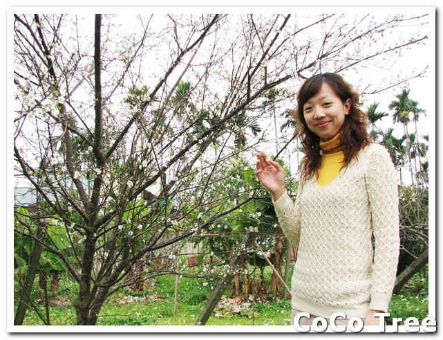 IMG_6501.jpg