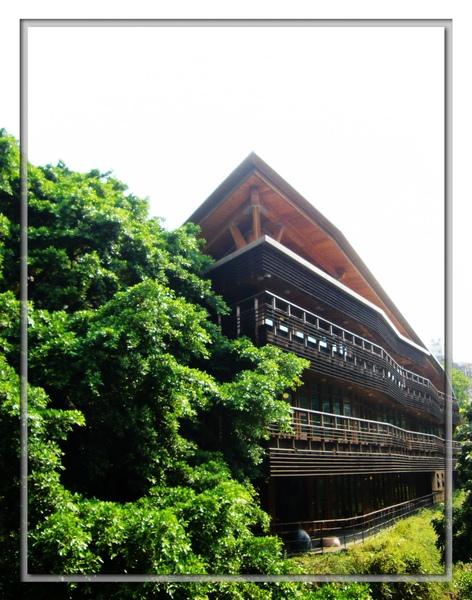森林中的圖書館.jpg